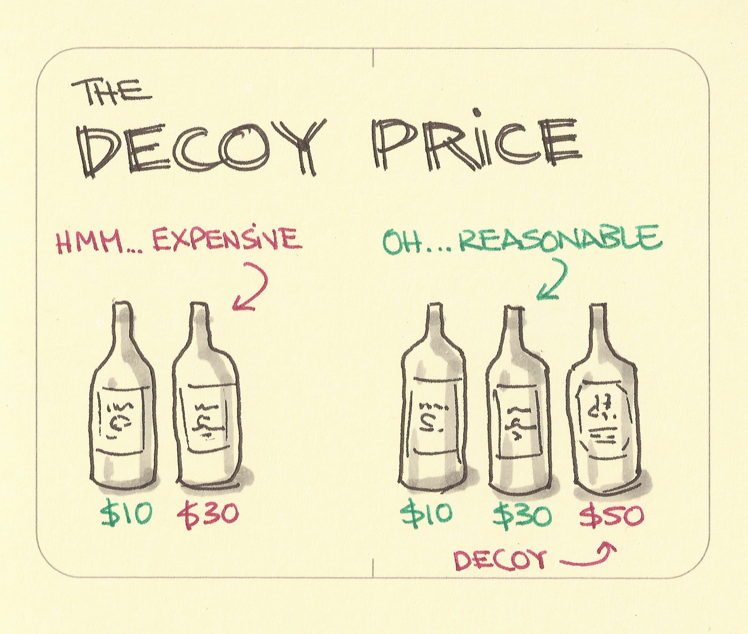 decoy effect image