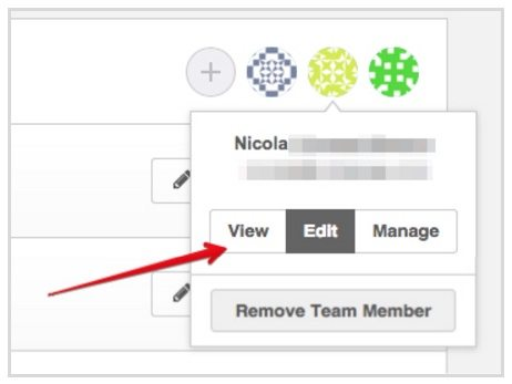 This screenshot shows Instapage's new team member permissions.