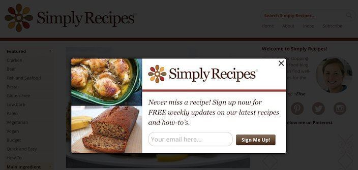 This picture shows how Simply Recipes collects email newsletter sign ups from its squeeze page.