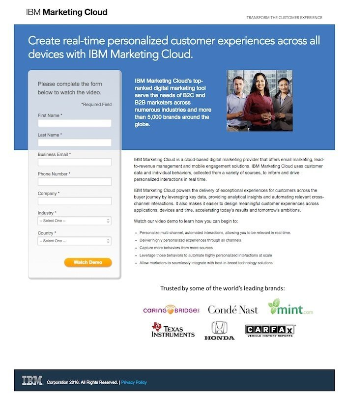 This picture shows marketers why IBM has one of the best landing pages you'll find online.